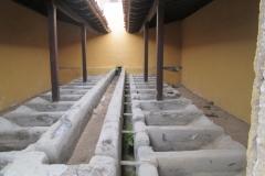Arafo historica (16)