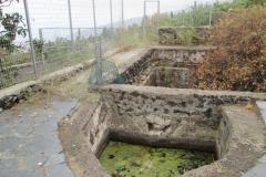 Arafo historica (7)