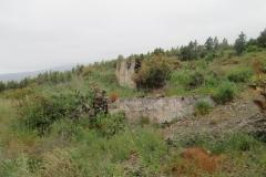 Arafo historica (8)