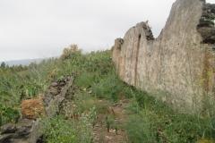 Arafo historica (9)