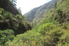 Chacorche (9)