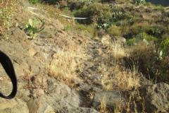 El Rincón (2)