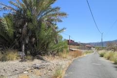 Camino Real (10)
