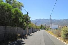 Camino Real (11)