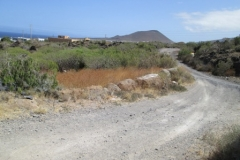 Camino Real (8)