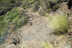 Camino viejo (8)