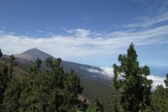 Camino La Crucita (1)