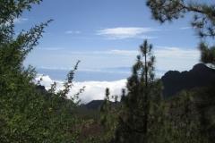 Camino La Crucita (4)