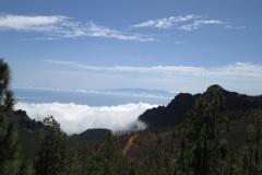 Camino La Crucita (5)